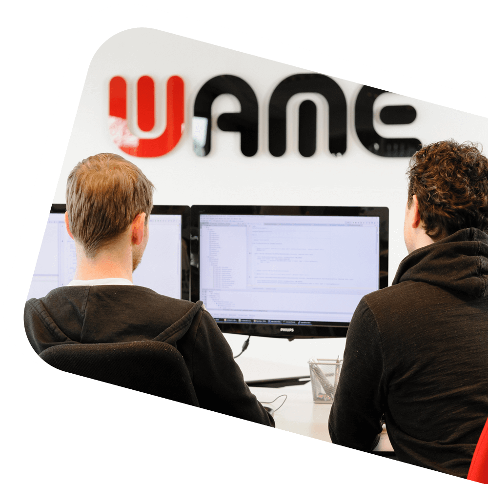 WAME software development
